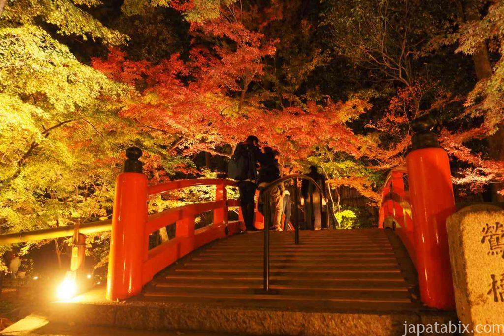 京都 北野天満宮 もみじ苑 紅葉 ライトアップ 鶯橋