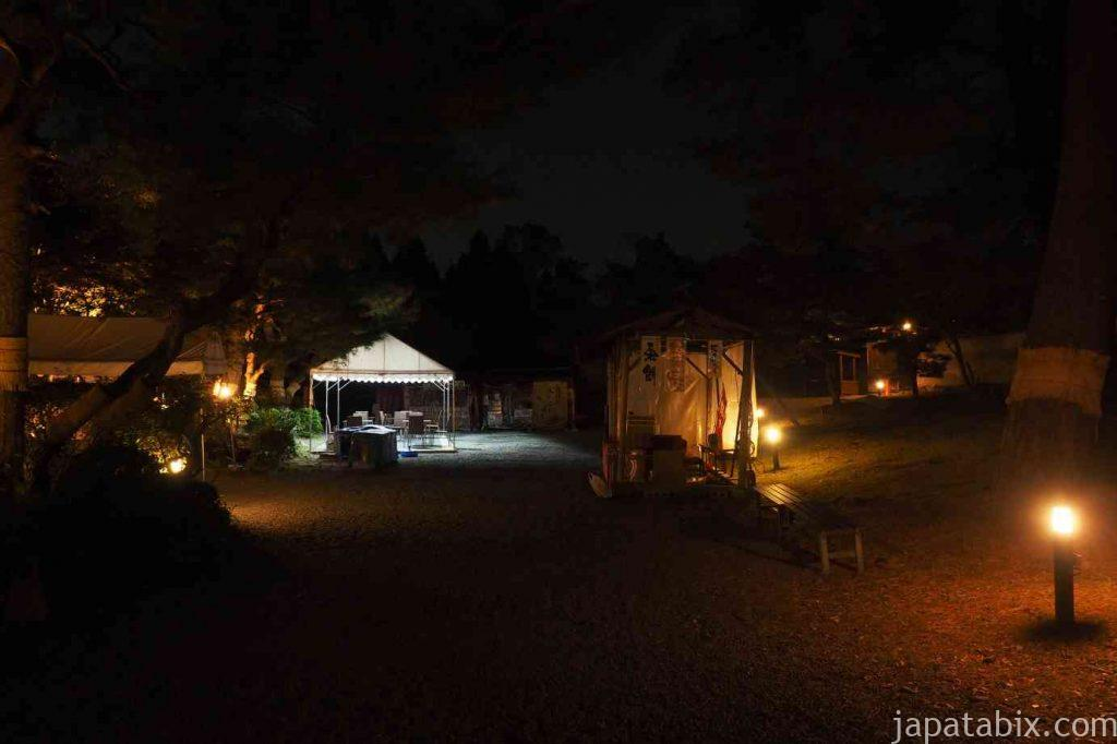 京都 醍醐寺 紅葉ライトアップ