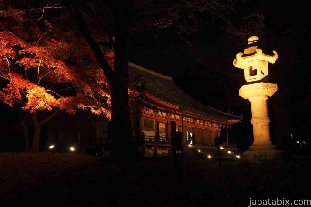 京都 醍醐寺 紅葉ライトアップ 金堂