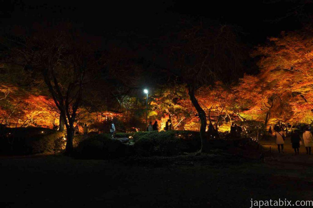 京都 醍醐寺 紅葉ライトアップ 林泉