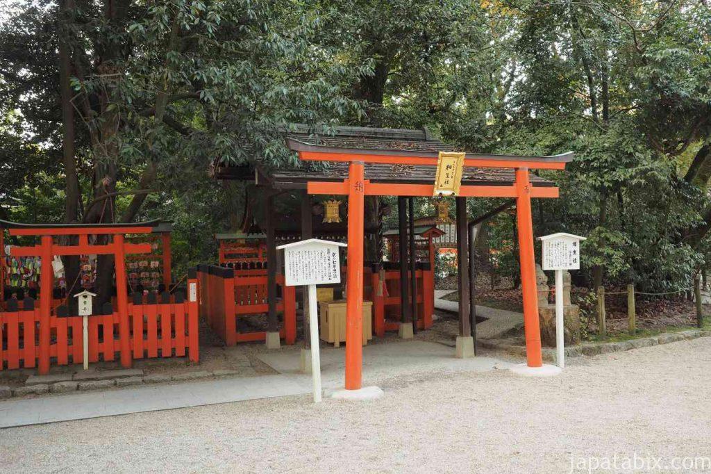 京都 下鴨神社 相生社 連理の榊