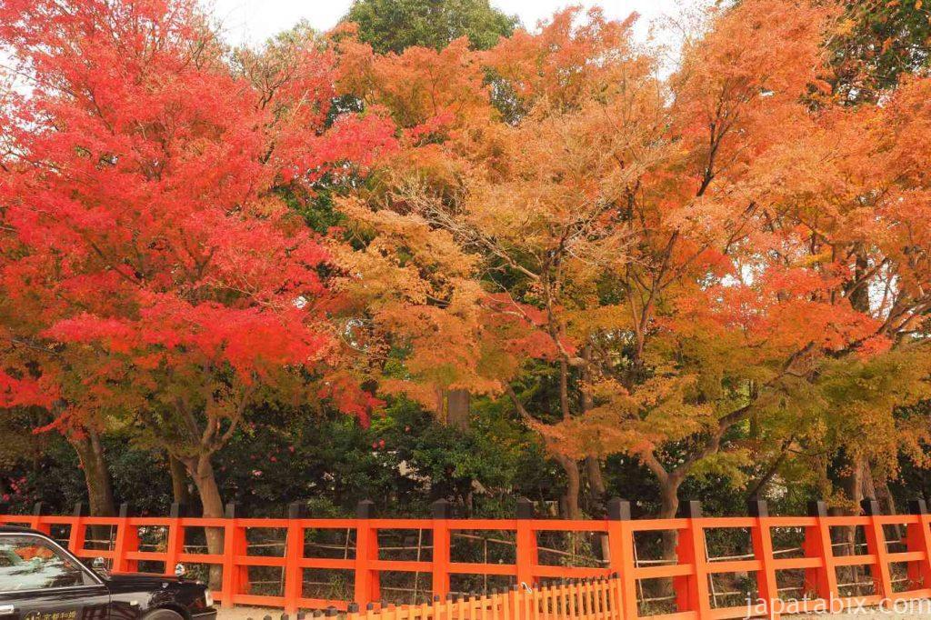 京都 上賀茂神社 境内の紅葉