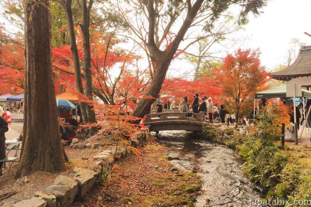 京都 上賀茂神社 ならの小川と紅葉