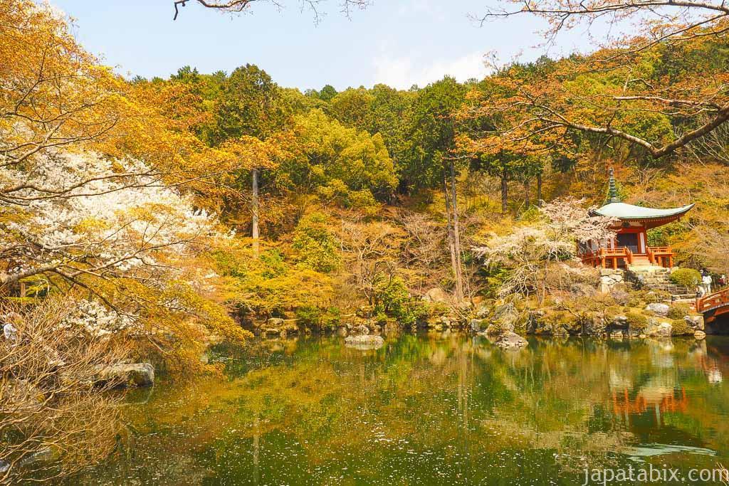 京都 醍醐寺 弁天堂の桜