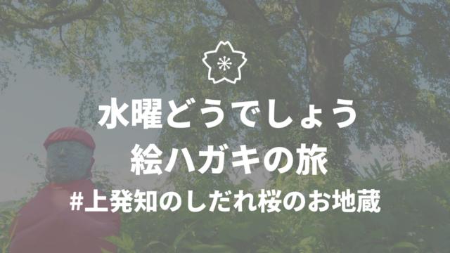 水曜どうでしょうロケ地巡礼 絵はがきの旅 上発地のしだれ桜