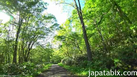 北海道 ニセコ 薬師温泉 道中