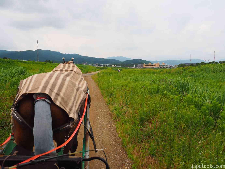 京都 トロッコ列車 保津川下り 馬車