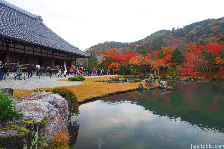 京都 嵐山 天龍寺 早朝拝観