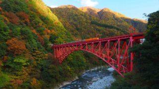 黒部峡谷の山彦橋の紅葉とトロッコ列車