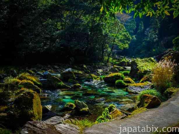 鹿児島 雄川の滝 展望所までの遊歩道