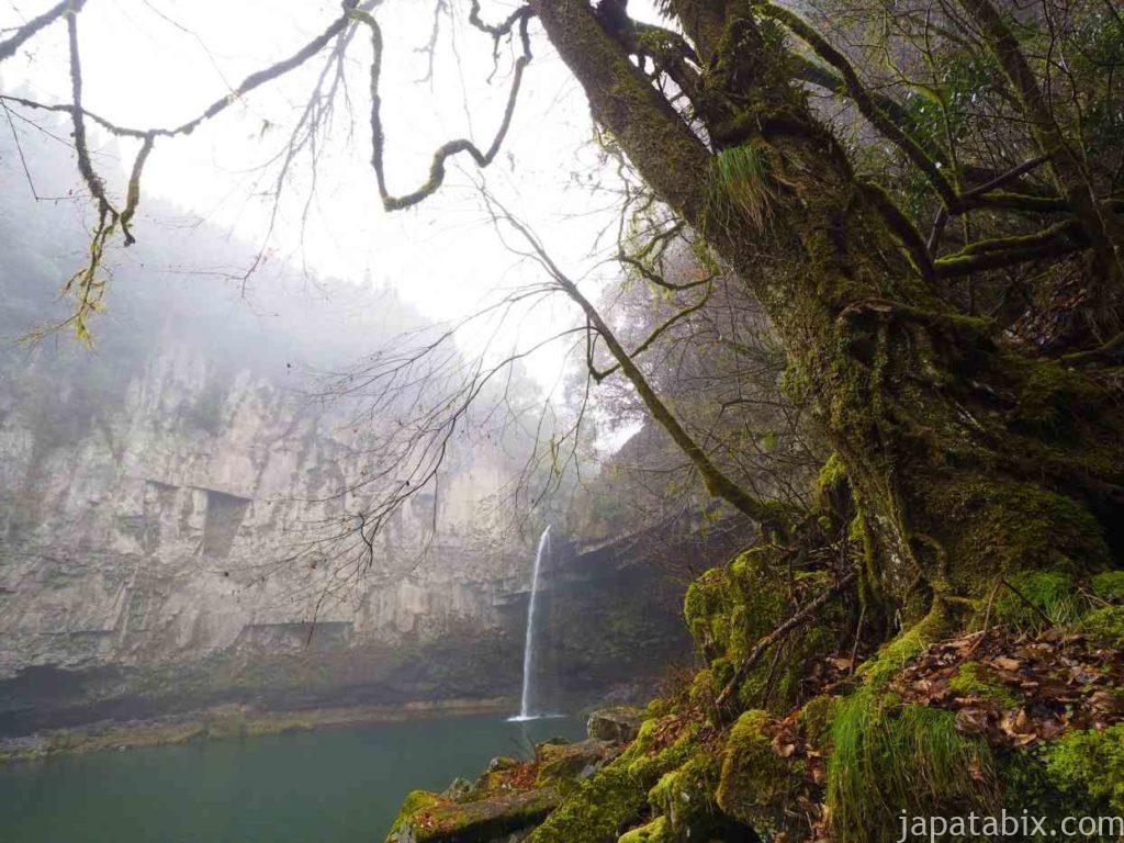 宮崎 うのこの滝