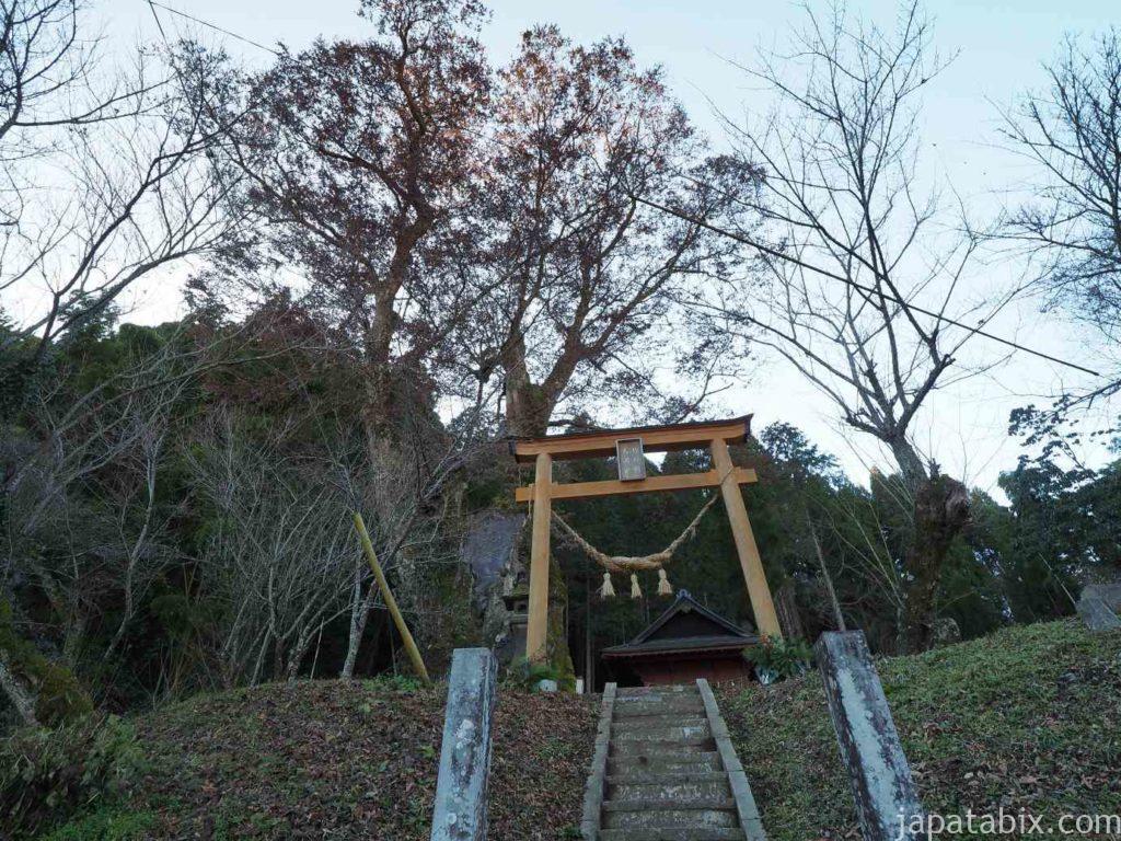 熊本 竹の熊天満宮 竹の熊の大ケヤキ