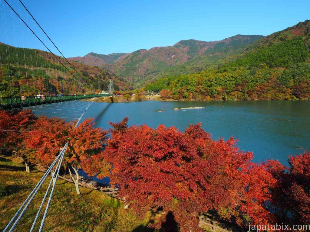 もみじ谷大吊橋と紅葉