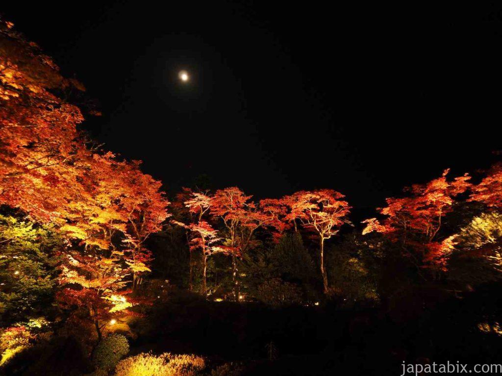 日光東照宮 庭園ライトアップ