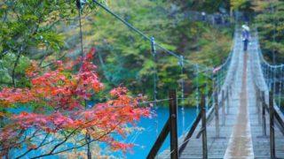 静岡県 寸又峡 夢の吊橋の紅葉