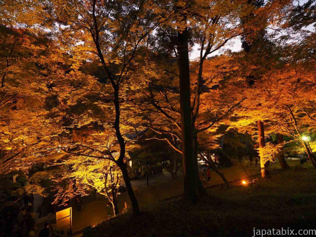 香嵐渓の紅葉 ライトアップ