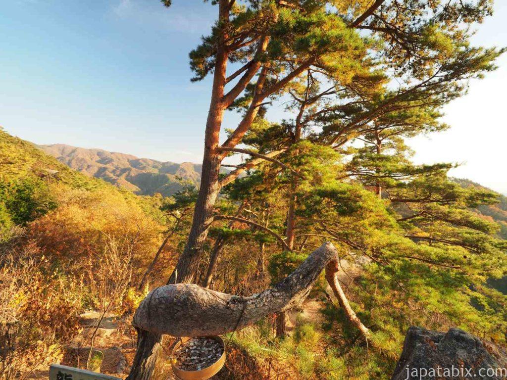 昇仙峡 うぐいす谷