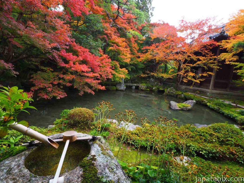 京都 蓮華寺 紅葉