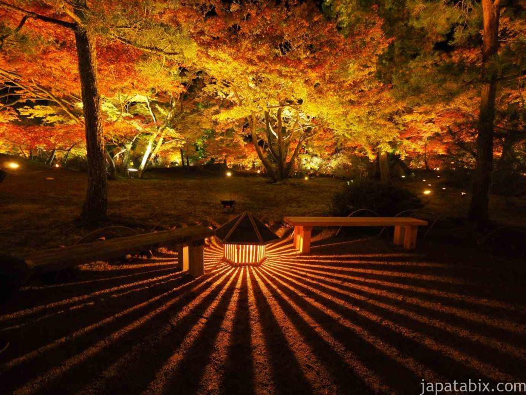 京都 嵐山 宝厳院 紅葉ライトアップ
