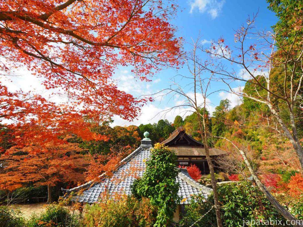 滋賀 湖南三山 善水寺の紅葉