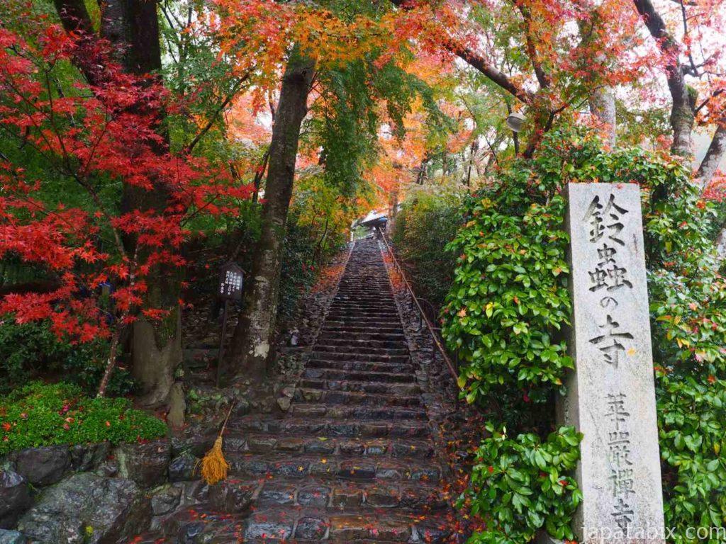 京都 華厳寺 鈴虫寺の紅葉
