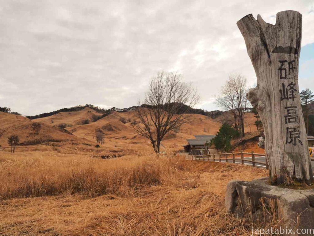 兵庫 砥峰高原