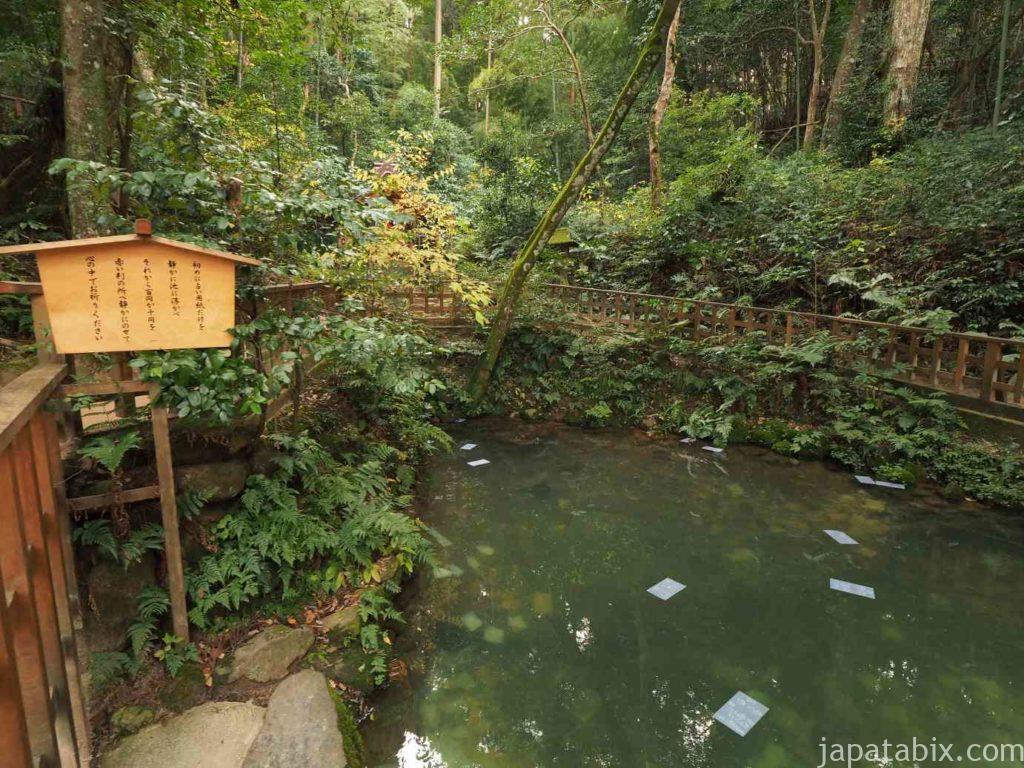 島根 八重垣神社 鏡の池