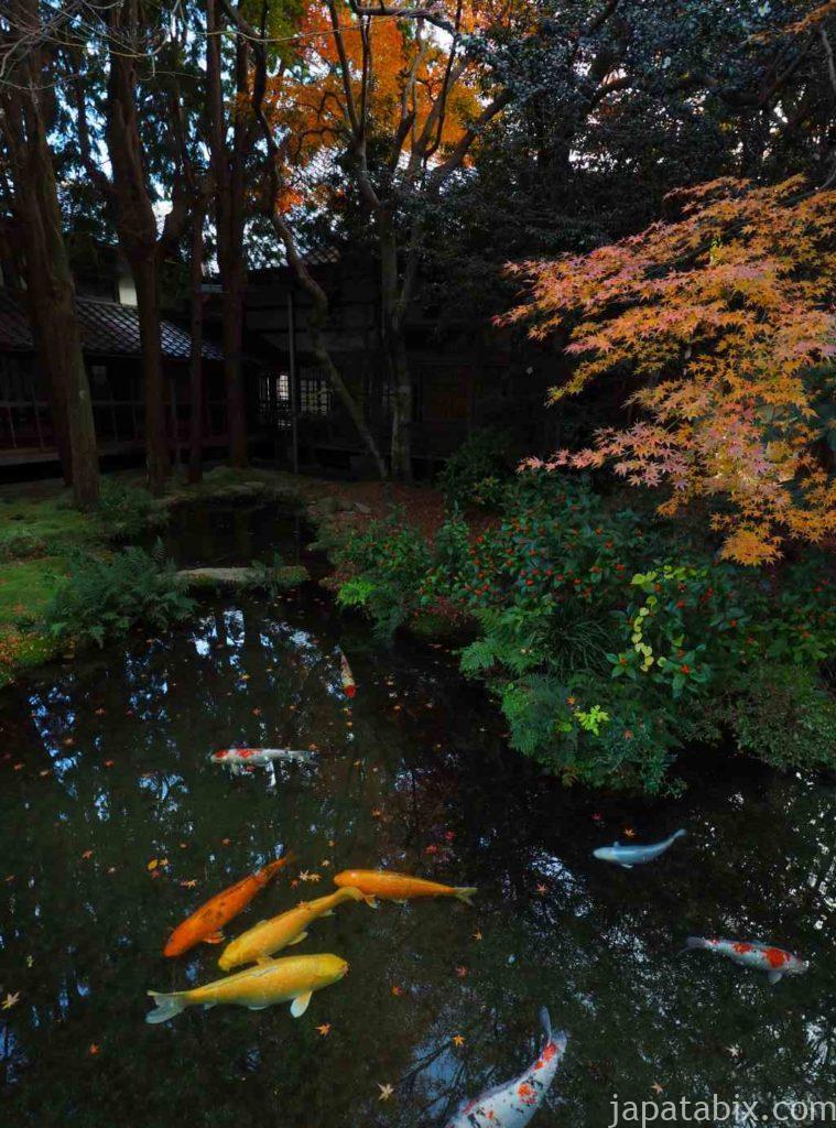 山口 功山寺 庭園