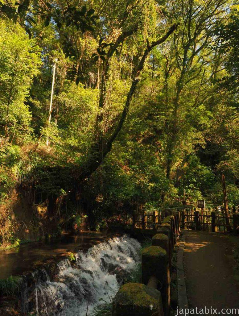 宮崎 関之尾滝