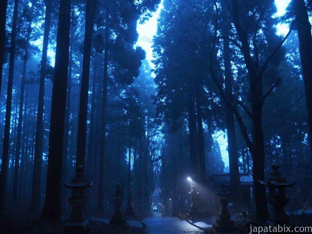 熊本 上色見熊野座神社
