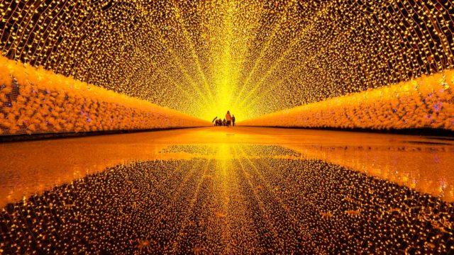 三重 なばなの里 光のトンネル