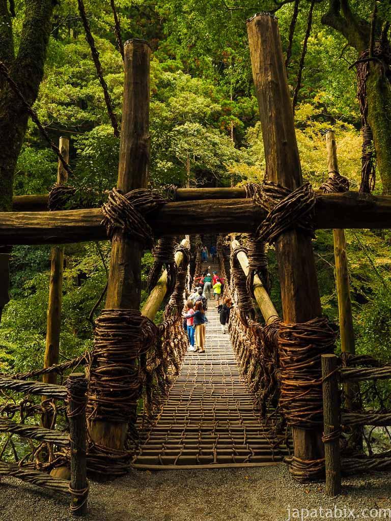 徳島 祖谷のかずら橋
