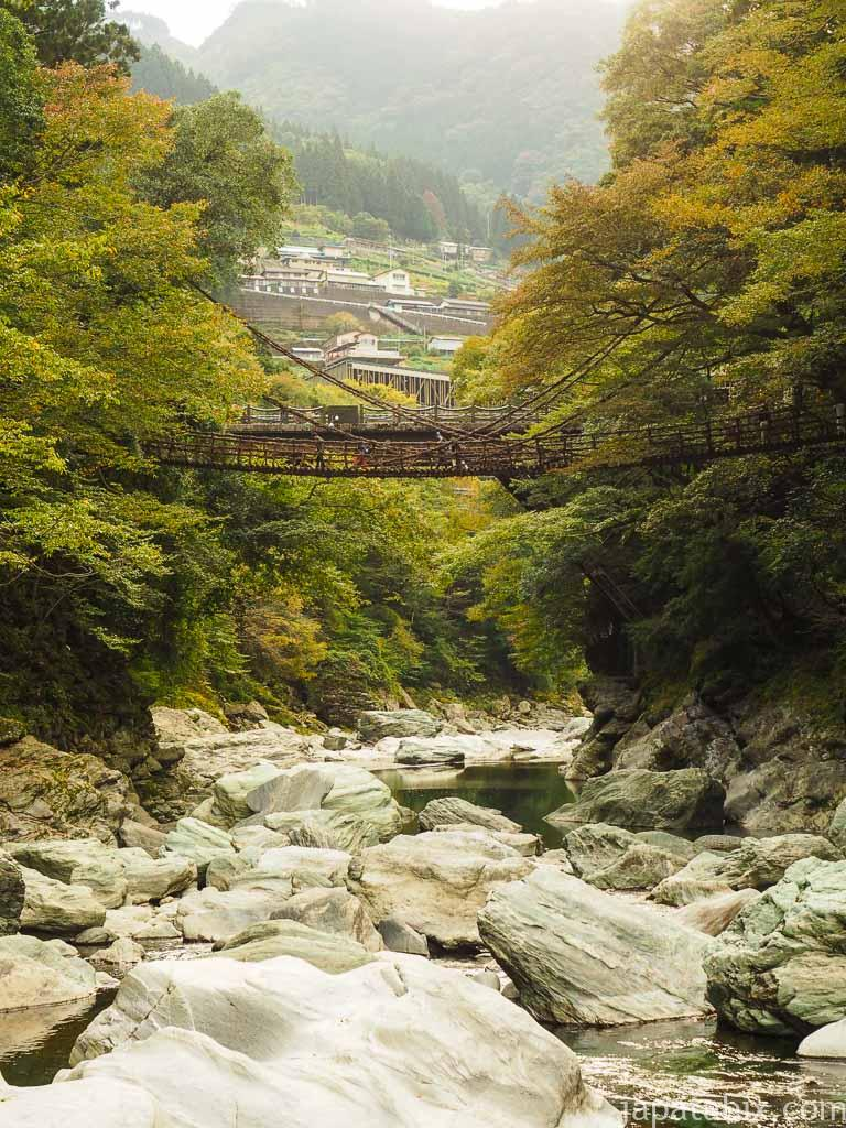 徳島 祖谷のかずら橋 全景