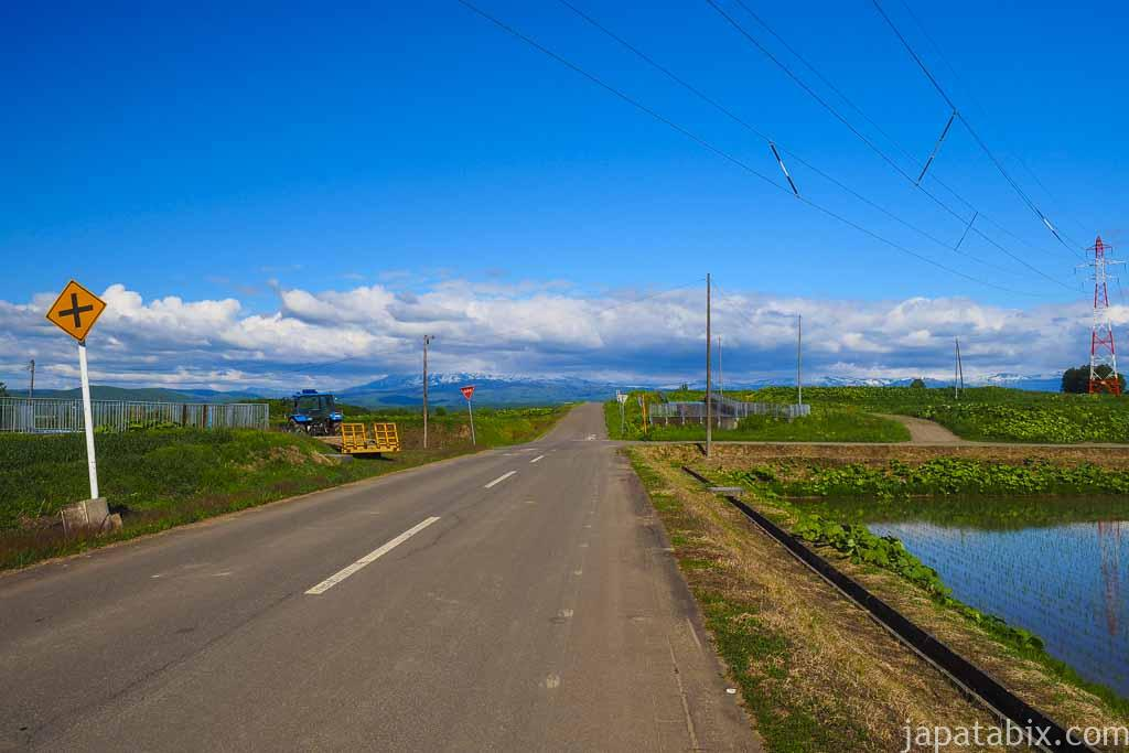 北海道 東川町の道