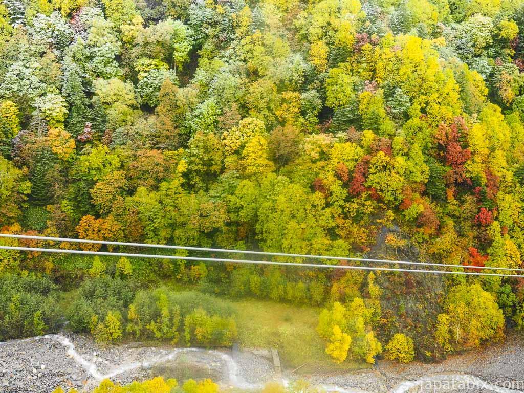 北海道 層雲峡 黒岳ロープウェイから見下ろす紅葉