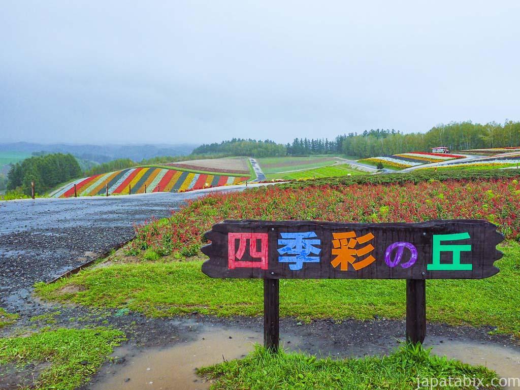 北海道 美瑛町 四季彩の丘