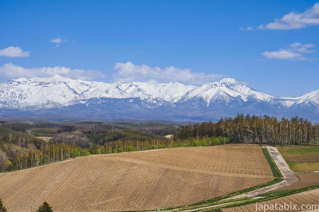 北海道 美瑛町 春の四季彩の丘と十勝岳連峰