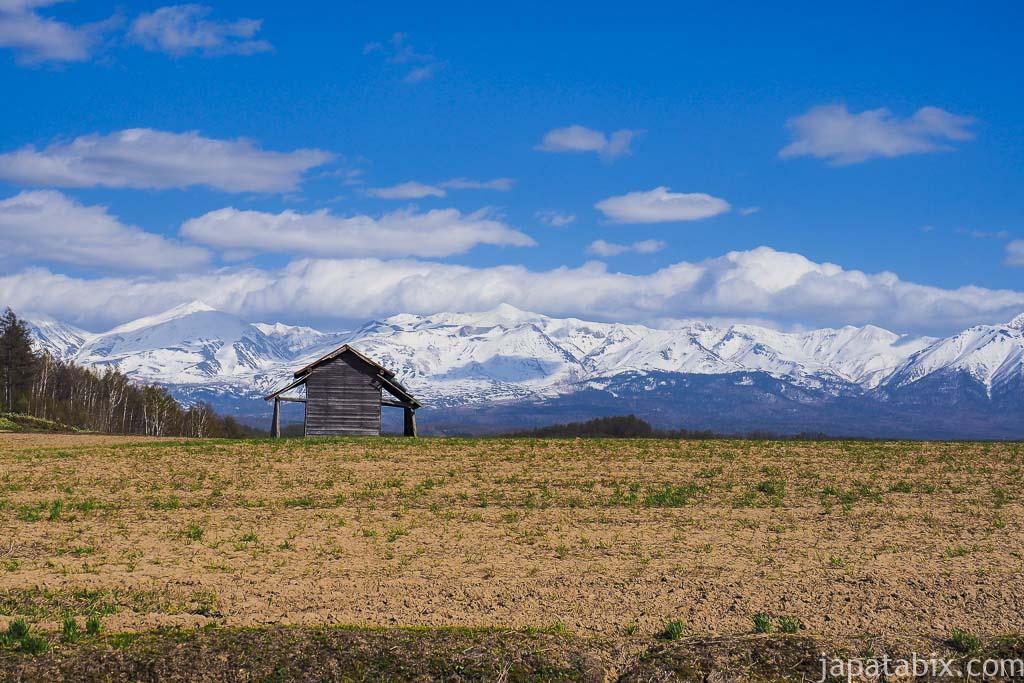 北海道 美瑛町の風景