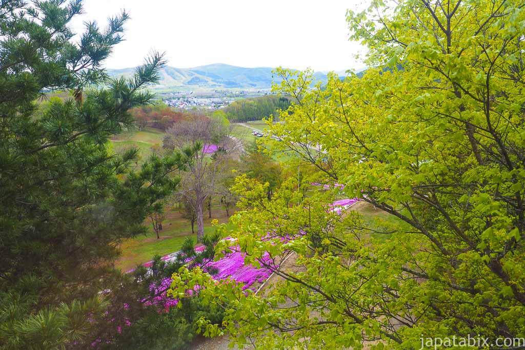 太陽の丘えんがる公園 展望台からの眺め