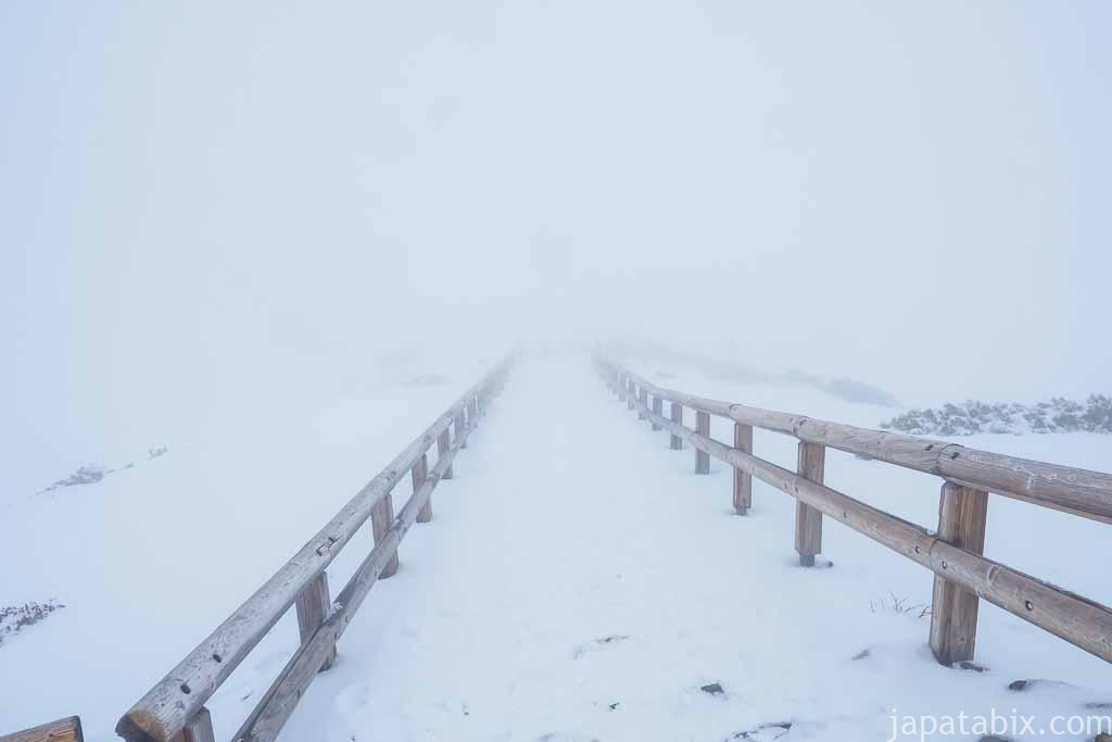 北海道 東川町 大雪山 旭岳 視界不良の散策