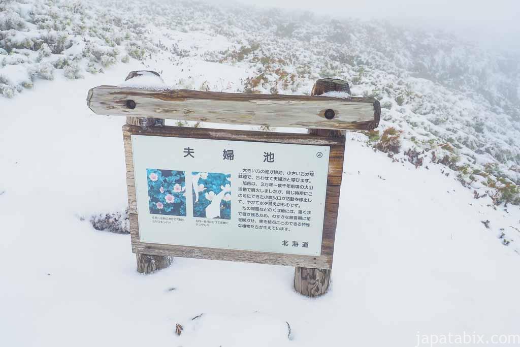 北海道 東川町 大雪山 旭岳 夫婦池