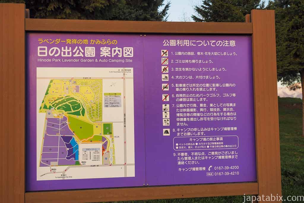 北海道 上富良野 日の出ラベンダー園