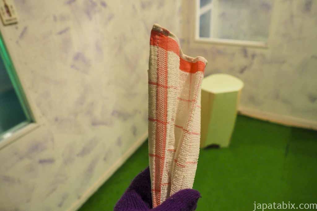 氷の美術館 北海道アイスパビリオン 凍ったタオル