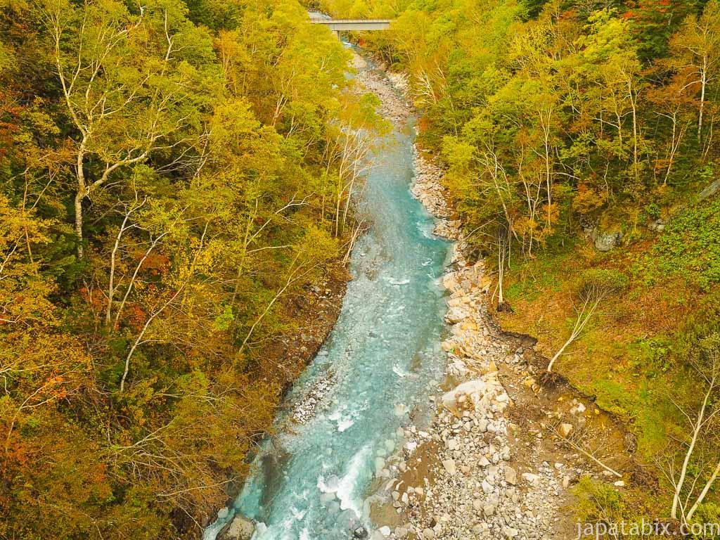 北海道 美瑛町 紅葉の美瑛川