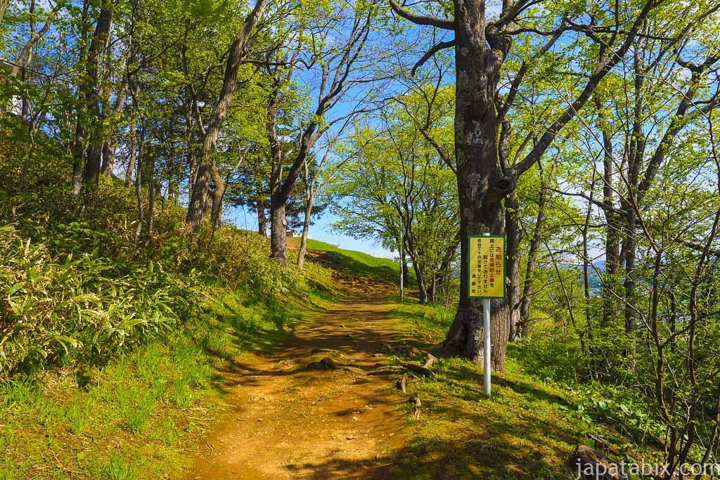 遠軽町 瞰望岩への山道