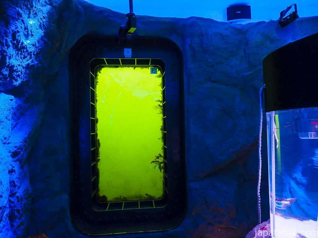 オホーツクの海底