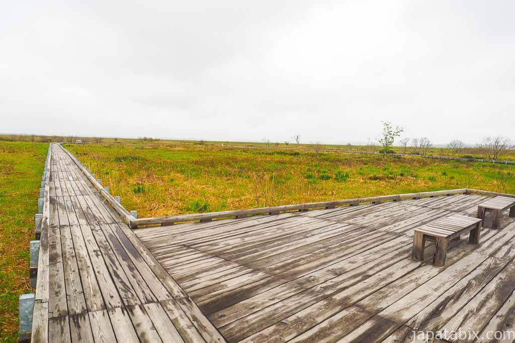 豊富町 サロベツ湿原 木道