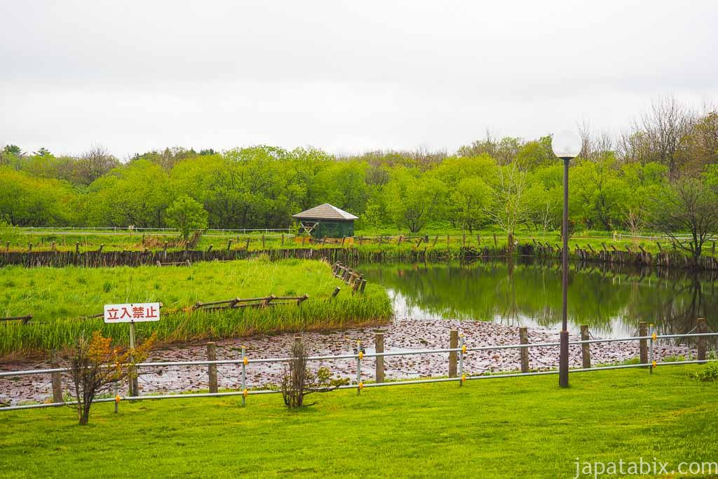 北海道 豊富町 兜沼公園