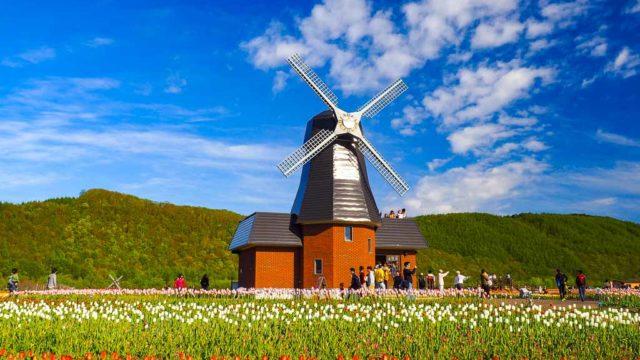 北海道紋別郡湧別町 かみゆうべつチューリップ公園