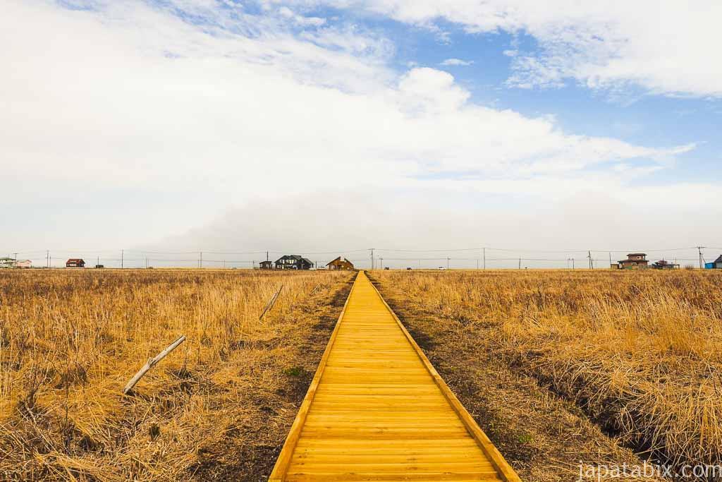 霧多布湿原ナショナルトラスト 琵琶瀬木道